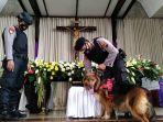 anjing-polres-kudus-lacak-bahan-peledak-di-gereja.jpg