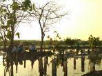banjir-rob-di-makam-pesanggrahan-kecamatan-wonokerto-kabupaten-pekalongan.jpg