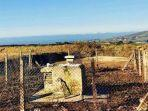 bunker-perang-dingin-berada-di-lokasi-pedesaan-dekat-st-agnes-cornwall.jpg