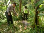 ditemukan-tewas-diduga-setelah-terjatuh-dari-pohon_20180419_195422.jpg