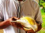 durian-sirouf_20171206_161910.jpg