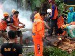 evakuasi-pohon-tumbang-di-pertigaan-bawen-kabupaten-semarang.jpg