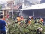 evakuasi-pohon-tumbang-oleh-relawan-bpbd-kudus.jpg