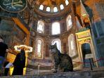 foto-yang-diambil-pada-2-juli-2020-nampak-gli-si-kucing-berada-di-hagia-sophia-istanbul-turki.jpg