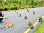 gambar-yang-diunggah-menteri-pemuda-dan-olahraga-negara-bagian-arunachal-pradesh-india.jpg