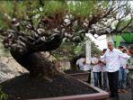 ganjar-pranowo-dan-bonsai_20180314_184511.jpg