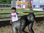 gorila-virtual_20180617_153939.jpg