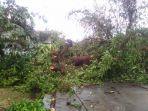 hujan-lebat-disertai-angin-kencang-menerjang-dua-wilayah-kecamatan-di-pati.jpg