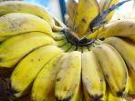ilustrasi-pisang-kepok_20170711_141355.jpg