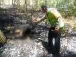 innalillahi-wa-innailaihi-rojiun-mbah-tijah-ditemukan-meninggal-kondisi-terbakar-di-pekarangan-anak.jpg