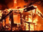 kebakaran-di-perkebunan-anggur-di-california_20171010_173434.jpg