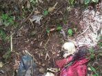 kerangka-manusia-misterius-di-wonogiri-ditemukan-warga-pada-sabtu-1652020.jpg