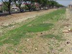 kering-sungai-di-desa-sedo-kabupaten-demak_20170816_150049.jpg