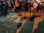 kondisi-kuda-yang-mati-mengenaskan-di-yogyakarta_20161213_143456.jpg