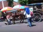 kusir-senior-digigit-kuda-di-purbalingga_20180222_233316.jpg