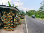 lapak-milik-warso-di-pinggir-jalan-kabupaten-pemalang.jpg
