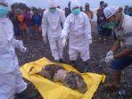 mayat-perempuan-tanpa-identitas-ditemukan-di-tepi-pantai-jepara.jpg
