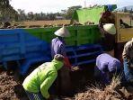 musim-kemarau-sawah-kering-dan-paceklik-petani-pun-jual-bongkahan-tanah_20180712_151002.jpg