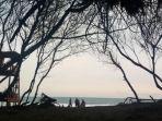 pantai-goa-cemara-di-desa-gadingsari-kecamatan-sanden-bantul-yogyakarta.jpg