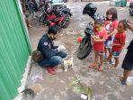 para-komunitas-pecinta-kucing-melakukan-kegiatan-street-feeding.jpg