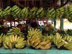 pedagang-pisang-di-guci.jpg