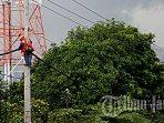 pemeliharaan-jaringan-listrik-semarang-2.jpg