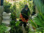 pemilik-toko-tanaman-wijayakusuma-tengah-menunjukkan-tanaman-yang-laris-di-tokonya-jalan-do.jpg