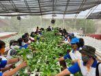 pengunjung-agrowisata-purwosari-memetik-buah-dan-sayur-minggu-25102020.jpg
