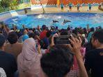 pengunjung-dolphin-center-batang.jpg