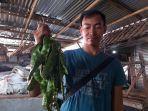 penjual-sayuran-di-pasar-pagi-kota-tegal-menunjukkan-petai-dagangannya-kamis-2342020.jpg