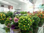 percantik-ruangan-dengan-tanaman-hias-dan-bunga-palsu_20180509_135022.jpg