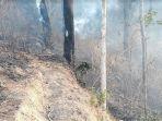 perkebunan-dan-hutan-perhutani-terbakar-di-purwanegara_20181008_223739.jpg