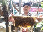 peternak-lebah-kota-tegal.jpg
