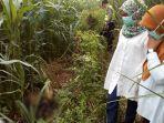 petugas-sedang-berada-di-lokasi-penemuan-jasad-di-area-kebun-jagung-kabupaten-tegal.jpg