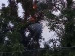 pohon-tua-yang-menjulang-tinggi-besar-di-areal-pemakaman.jpg