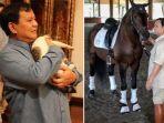prabowo-subianto-bersama-kucing-dan-kuda.jpg