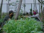 program-pemberdayaan-petani-pertamina.jpg