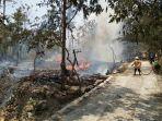 rumah-nasirah-ludes-terbakar-di-bringin_20181003_192812.jpg