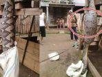 seekor-ular-piton-sepanjang-6-meter-ditemukan-warga-di-desa-tanjung-kurung_20170714_223620.jpg