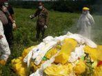 sejumlah-petugas-memusnahkan-limbah-medis-yang-ditemukan-di-pinggir-jalan-raya-tenjo.jpg