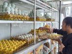 seorang-karyawan-toko-oleh-oleh-di-jalur-pantura-kota-tegal-sedang-menata-telur-asin.jpg