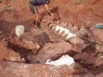 sisa-fosil-berusia-98-juta-tahun-di-provinsi-neuquen-di-patagonia-barat-laut-argentina.jpg