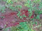 tanah-berdarah.jpg