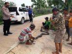 ular-king-kobra-sepanjang-4-meter-berhasil-ditangkap-di-area-persawahan-di-grobogan.jpg