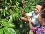 wisata-petik-kopi-di-kampung-kopi-banaran-bawen-kabupaten-semarang_20170626_045302.jpg