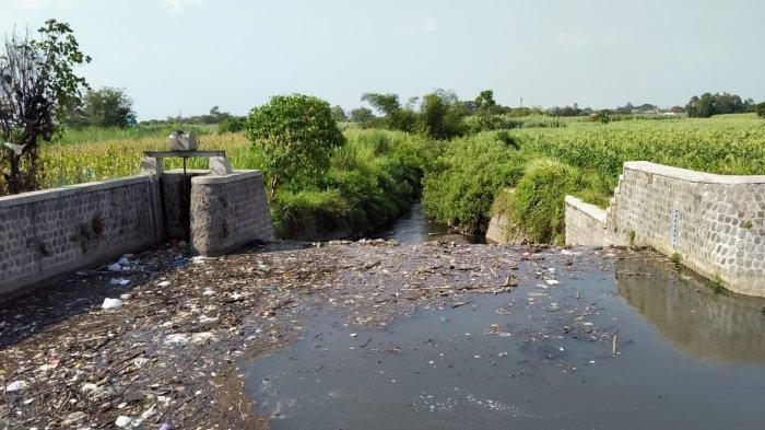 Air Sungai Kresek Kediri Warnanya Berubah Menjadi Hitam Pekat Berbau