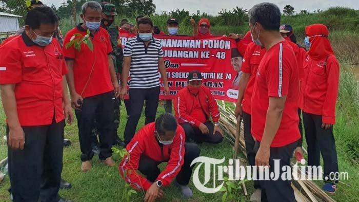 Gelar Aksi Tanam Pohon di Sungai Bengawan Solo, PDI Perjuangan Tuban: Ini Bagian Politik Ekologi