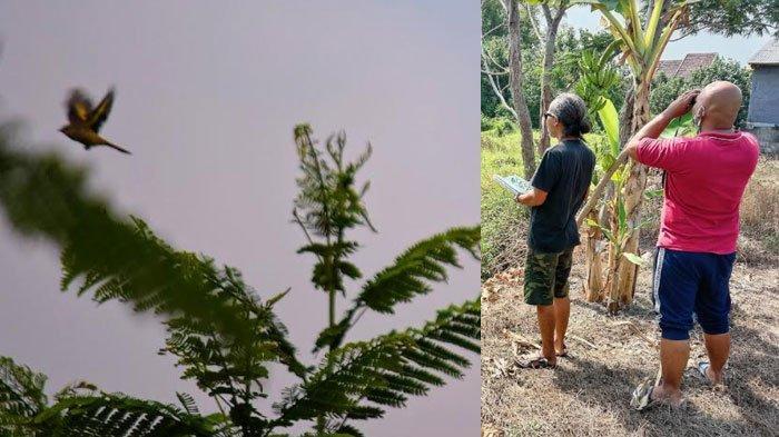 Yayasan Sekolah Konang Temukan Potensi Fauna di Desa Galih Pasuruan, Ada 8 Jenis Satwa Dilindungi