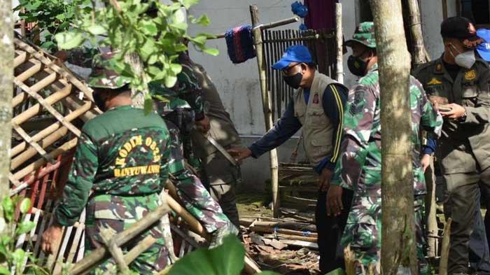 Angin Puting Beliung Rusak 36 Rumah Warga di Banyuwangi, Sejumlah Pohon Tumbang