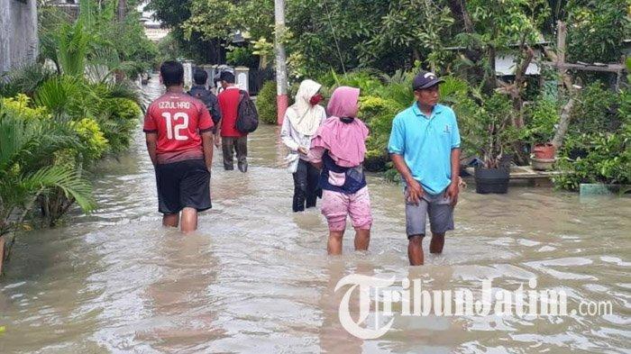 Banjir di Bojonegoro, 1.542 Rumah Terdampak, Sawah Terendam, Jembatan Jatiblimbing Terputus